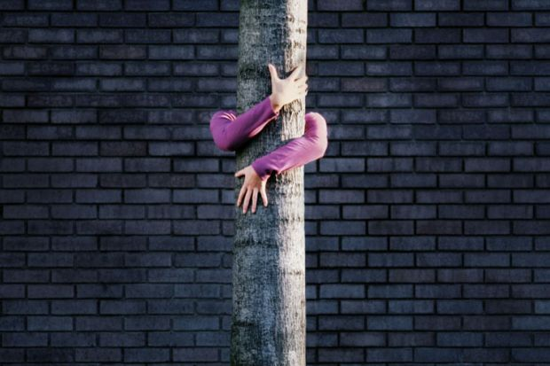 Woman hugging tree trunk