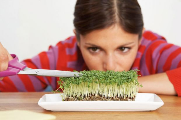 Woman trimming sprouts with scissors