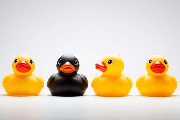 Yellow and black rubber ducks