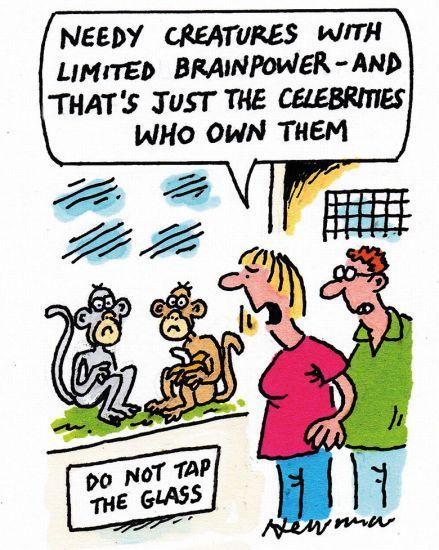 Cartoon 6 June 2019