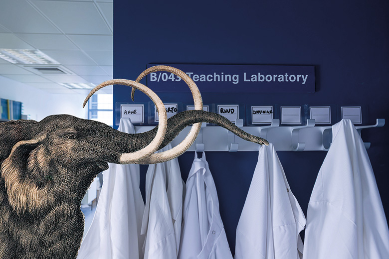 A woolly mammoth in a laboratory