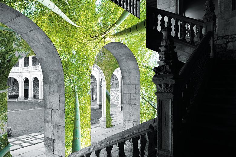 Trees growing on stone pillars