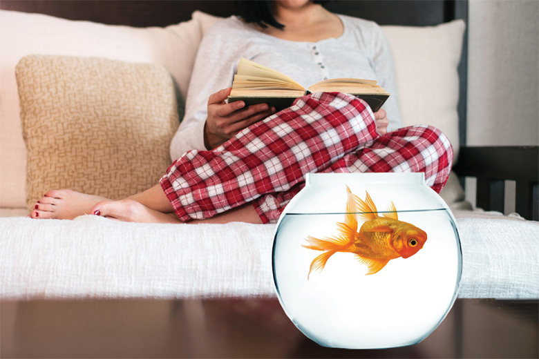 Upside down goldfish floating in bowl
