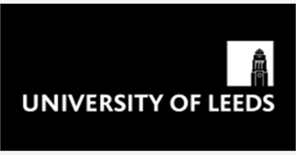 Lecturer In Fashion Marketing And Brand Communication Job With University Of Leeds 224557